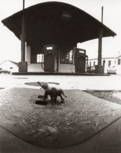 pinhole photograph